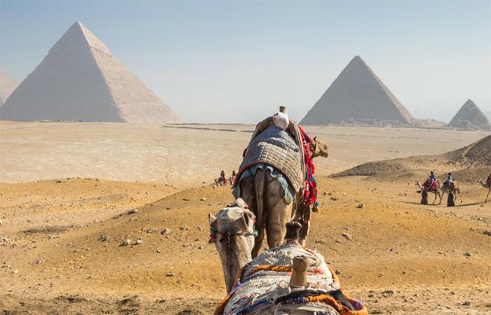 Экскурсии к Пирамидам